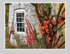 Near Fish Creek, Door County - Daniel Anderson Fish Creek, Door County, Doors, Gate
