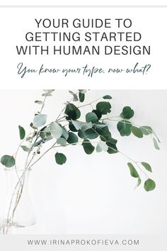 There's so much to learn about Human Design, but how do you actually know whether you are already living in alignment with your design or not? Click here to discover in which areas of your life you are already an energy pro and which ones need a bit more practice! | Human Design Coach | www.irinaprokofieva.com Do You Feel, Do You Know What, Need To Know, How Are You Feeling, Excited About Life, I Ching, Self Empowerment, Quantum Mechanics, Design Strategy