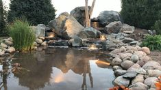 Lake Landscaping, Landscaping With Rocks, Backyard Water Feature, Ponds Backyard, Building A Pond, Natural Pond, Pond Plants, Water Pond, Water Features In The Garden