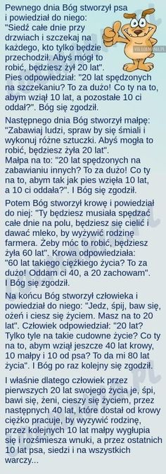 Stylowi.pl - Odkrywaj, kolekcjonuj, kupuj Something To Remember, Wtf Funny, Man Humor, Funny Moments, How To Know, Memes, Funny Photos, True Stories, Life Lessons
