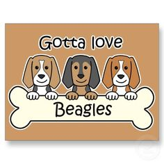 Are you interested in a Beagle? Well, the Beagle is one of the few popular dogs that will adapt much faster to any home. Beagle Art, Beagle Puppy, Dachshund Art, Corgi, Cute Dogs Breeds, Dog Breeds, I Love Dogs, Puppy Love, Animais