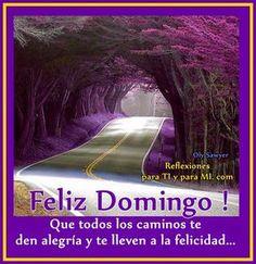Buenos Deseos para TI y para MÍ: * Que todos los caminos te den alegría ... FELIZ D... Happy Week, Happy Sunday, Weekend Images, Spanish English, Morning Quotes, Puerto Rico, Good Morning, Sunday Morning, In This Moment
