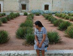 Spirit of Oaxaca - Oaxaca, Oaxaca