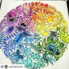 #rainbowfet - photos Instagram