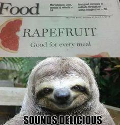 molester sloth - Google Search