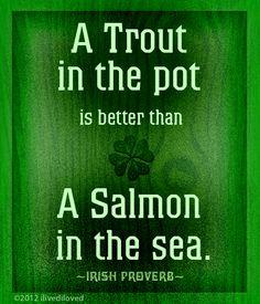 Irish proverb from ilivediloved.com
