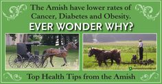 What Can We Learn About Healthy Living from the Amish? from Healthy Holistic Living