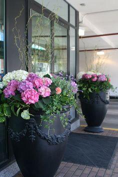 Hydrangea Potted, Hortensia Hydrangea, Front Door Plants, Garden Front Of House, Summer Plants, Container Gardening Vegetables, Small Garden Design, Container Flowers, Garden Inspiration