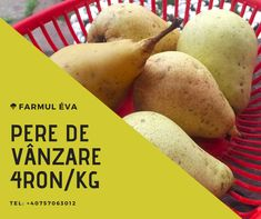 4ron/kg Potatoes, Canning, Vegetables, Food, Potato, Essen, Vegetable Recipes, Meals, Home Canning