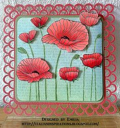 poppies by EmiliaG, via Flickr