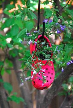 If the shoe doesn't fit, put it in your garden? - Mom Favorites