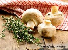 Weekly Newsletters Highlights - There are many reasons why you should eat more mushroom.