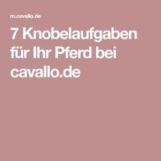 7 Knobelaufgaben für Ihr Pferd bei cavallo.de