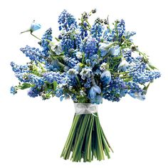 A Retro-Inspired Wedding Bouquet with Blue Muscari. Muscari, forget-me-not, and delphinium wedding bouquet, See more muscari wedding flowers. Delphinium Wedding Bouquet, Blue Wedding Flowers, Bridal Flowers, Blue Flowers, Bouquet Wedding, Wedding Favors, Bride Bouquets, Bridesmaid Bouquet, Bridesmaids