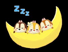 Chip n Dale discovered by GLen =^● 。●^= on We Heart It Good Night I Love You, Good Night Messages, Good Night Sweet Dreams, Good Night Quotes, Good Morning Good Night, Animated Emoticons, Funny Emoticons, Good Night Blessings, Good Night Wishes