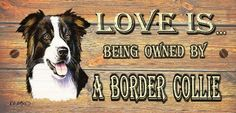 Border Collie Wooden Funny Sign Wall Plaque Gift Present Love is Being Owned By A Border Collie Dog , http://www.amazon.co.uk/gp/product/B0068HWZE8/ref=cm_sw_r_pi_alp_.yokrb15QWZ9M