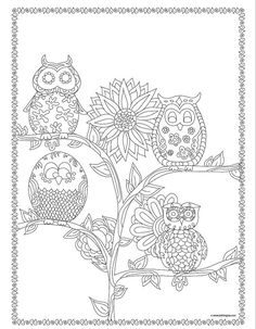 Adult Coloring Books: Owls 30 Designs Adult by BethIngrias on Etsy