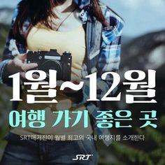스퀘어 - 국내여행 1월~12월 여행가기 좋은곳 Travel Information, Touring, Travel Tips, Places To Go, Journey, Vacation, Photography, Korea, Travelling