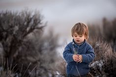Cold and Silver by Adrian C. Murray