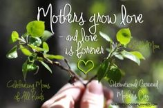 International Bereaved Mother's Day: An Open Letter to my Fellow Sisters in Loss – thelifeididntchoose Baby Live, Grieving Mother, Out To Lunch, Mothers Day Special, A Day To Remember, Precious Children, Open Letter, Family First, Bereavement
