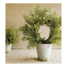 Cedar Wreath Topiary from Crate and Barrel. Adorable for table toppers, just add petit ornaments, and mini lights!