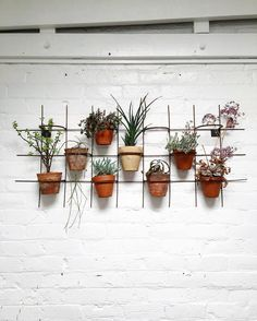 Let's start the day with another lovely plant display idea for interiors. Now I wish I had a white washed brick wall. And space for that matter by igorjosif Vertical Planter, Planter Pots, Garden Trellis, Start The Day, Brick Wall, Good Morning, Let It Be, Display, Instagram Posts