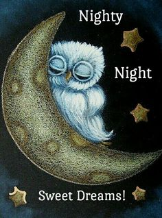 Tiny Baby Blue Owl Sleeping in The Moon by Artist Cyra R. Owl Pictures, Owl Always Love You, Beautiful Owl, Owl Art, Art And Illustration, Cute Owl, Art Portfolio, Stars And Moon, Fantasy Art