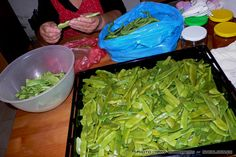 fasolakia-1 Greek Recipes, Food Hacks, Food Tips, Freezer Meals, Food Storage, Preserves, Celery, Asparagus, Green Beans