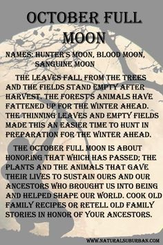 The October full moon is about honoring that which has passed.