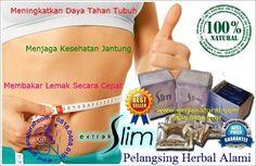 0818 0408 0101 xl obat pelangsing obat diet obat herbal obat