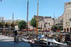 Rotterdam Boats
