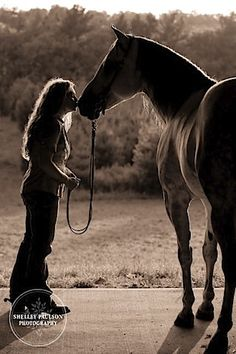 B full shadow shot of girl kissing horse on nose. Horse's rear toward camera. Girl standing sideways.