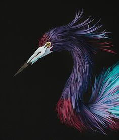 """*Paper Sculpture - """"Bird"""" by Diana Beltran Herrera"""