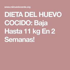 DIETA DEL HUEVO COCIDO: Baja Hasta 11 kg En 2 Semanas!