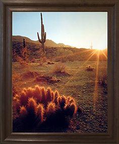 Southwest Cactus Field Sunset Desert Scenic Wall Decor Br... https://www.amazon.com/dp/B01LWSCPW6/ref=cm_sw_r_pi_dp_x_rS2ozbXPJ7QKR