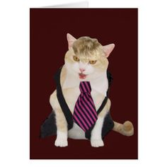 Funny Boss Cat Valentine Card - cat cats kitten kitty pet love pussy