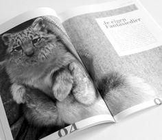 Eigen ontworpen fantasiedier voor mijn portfolio magazine