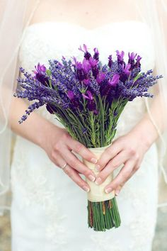8 best Purple Flowers images on Pinterest | Boyfriends, Wedding ...