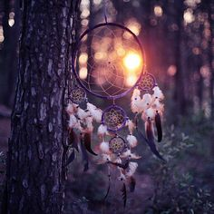 sunlight through a dream catcher