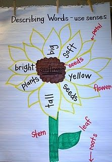 Sunflower Adjectives by Eberhart's Explorers