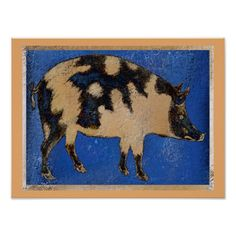 Country Pig Poster @zazzle