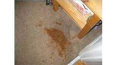 How To Remove Stains From Carpet With Homemade Remedies
