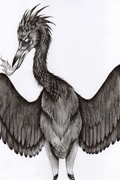 Onmorakai- Japanese folklore: a fire breathing black crane. They are the spirits of freshly buried corpses.