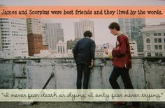 """James & Scorpius were best friends and they lived by the words, """"I never fear death or dying; I only fear never trying. Harry Potter Tumblr, Harry Potter Theme, Harry Potter Jokes, Harry Potter Pictures, Harry Potter Fandom, Harry Potter Characters, James Sirius Potter, Harry Potter Next Generation, Writing Prompts Funny"""