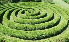 This labyrinth is designed for kids to run through or as a contemplative journey for adults. The cedar hedge is kept trimmed at about 3 feet high.