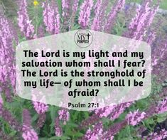 Psalm 27:1 Psalm 27, Do Not Be Afraid, My Salvation, Fear Of The Lord, Continue Reading, Of My Life, No Worries, Bible Verses, Sick