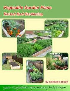 Vegetable Garden Plans for rasised beds, row gardening and square foot gardens garden layout Small Vegetable Gardens, Vegetable Garden Planning, Vegetable Garden For Beginners, Home Vegetable Garden, Gardening For Beginners, Gardening Tips, List Of Vegetables, Growing Vegetables, Gardening Vegetables