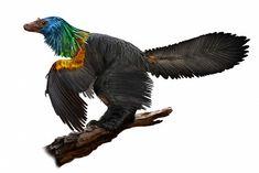 Szivárványos tollazatú dinoszauruszt fedeztek fel Kínában