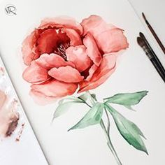 Just red flower . #watercolor #waterblog #red #peony #peonies #floral #nature #vsco #vscocam #botanical #words_aboutart #drawing #painting #vryabinina_watercolor #illustration #акварель #цветок #красный #пион #цветочный #природа