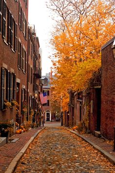 """Historic *Acorn Street - Boston, Massachusetts*"" - Boston's Beacon Hill section in the height of autumn with colorful leaves and pumpkins on the cobblestone street."